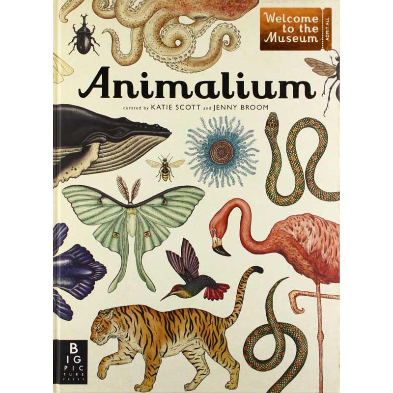 Animalium-Cover