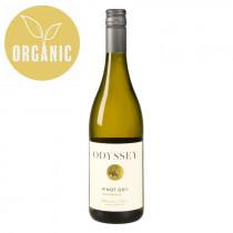 Odyssey Pinot Gris