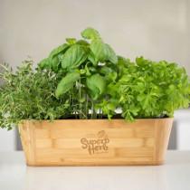 Superb Herb - Bamboo Herb Holder