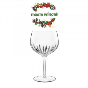 Luigi Bormioli Mixology Gin Glass