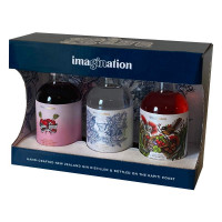 Imagination Gin Pack