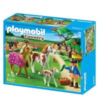 Playmobil Paddock & Horses