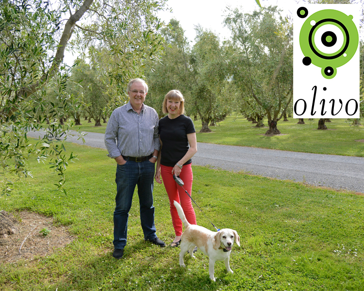 Olivo Olive Oil
