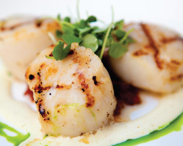 Scallops with a Citrus Marinade