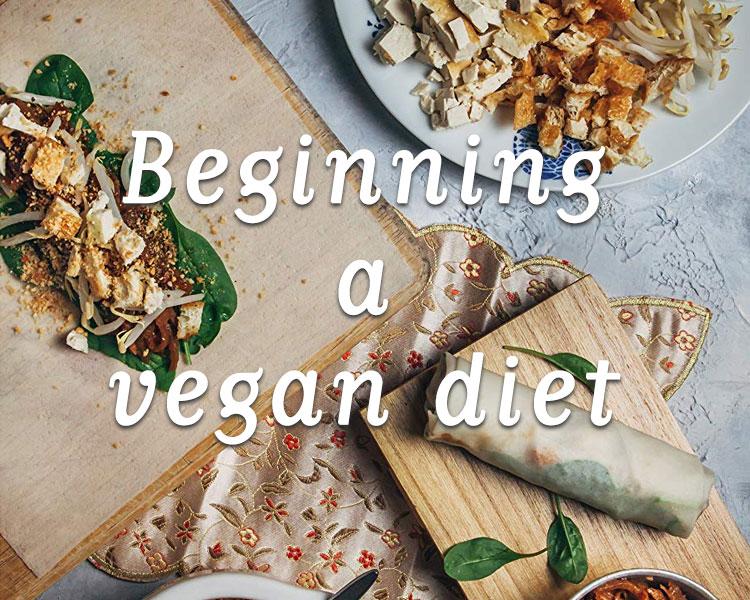 Beginning a Vegan Diet
