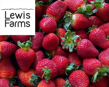 Supplier Profile: Lewis Farms
