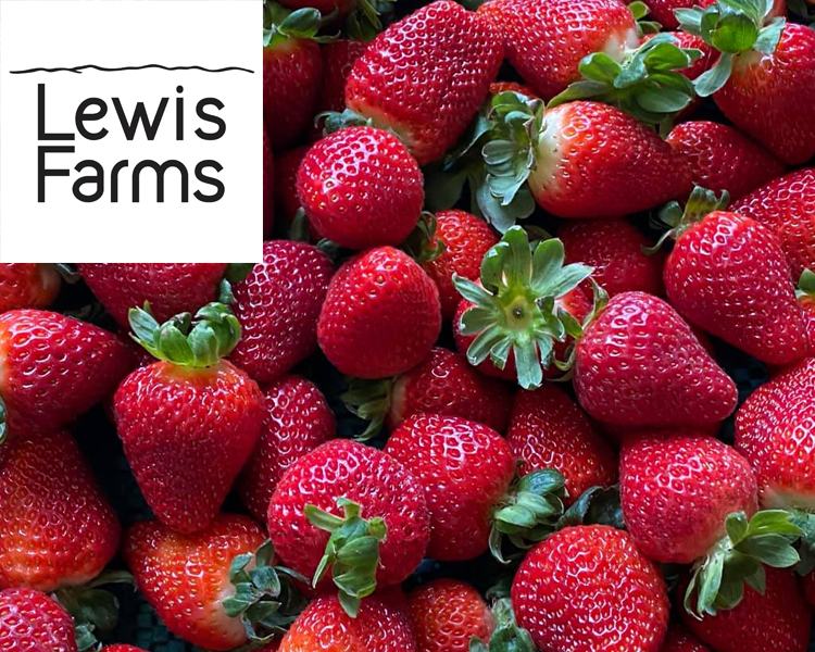 Supplier Profile: Lewis Farms