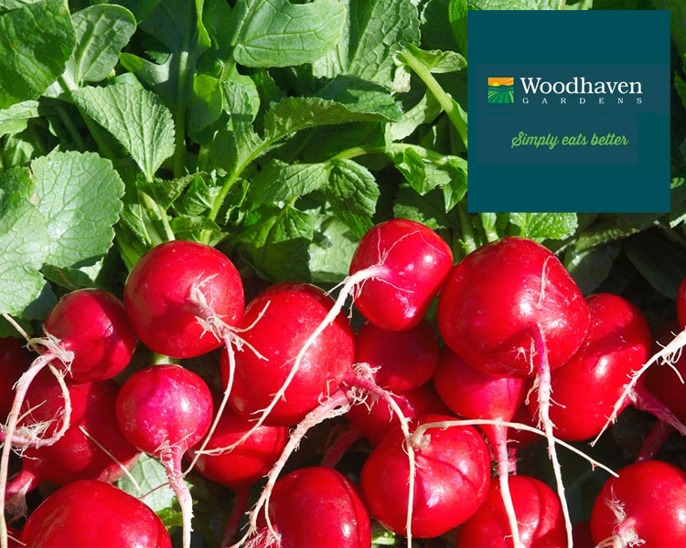 Supplier Profile: Woodhaven Gardens