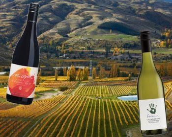 What's Hot - Organic Wines